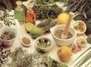 Remédios naturais podem gerar danos à saúde